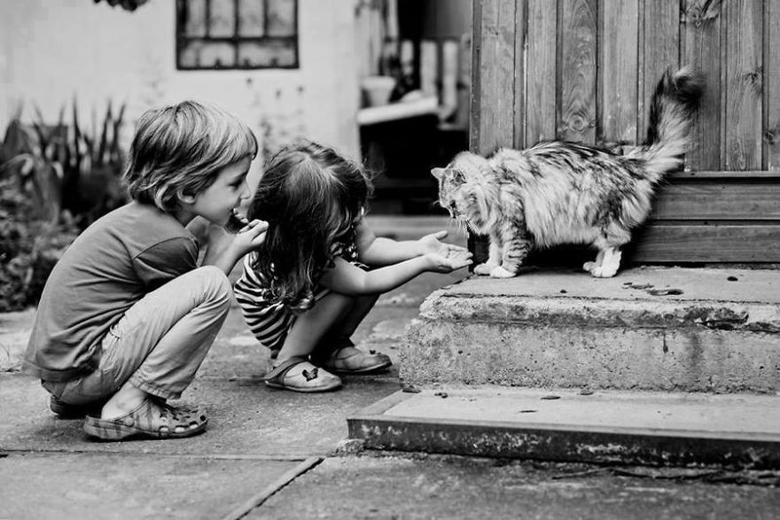 Children And Their Cat