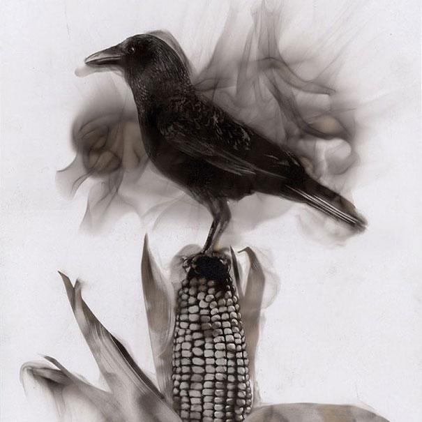 dibujar-fuego-steve-spazuk-9