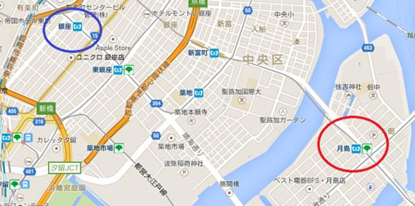 anciano-paseando-tortuga-sulcata-tokio-japon (5)