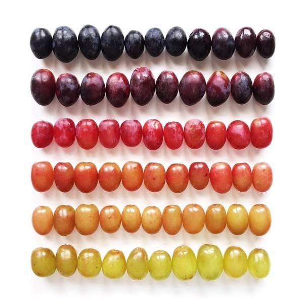 fotos-comida-ordenada-colores-foodgradients-brittany-wright (8)