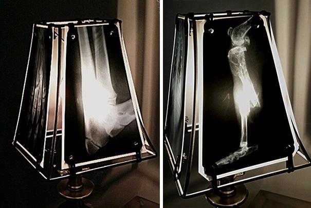 lamparas-radiografias-animales-veterinaria-oncologa-spike-vain (3)