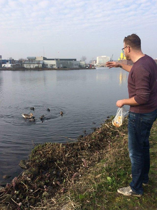 proyecto-recoger-basura-diariamente-pigswegetwhatpigsdeserve-holanda (13)
