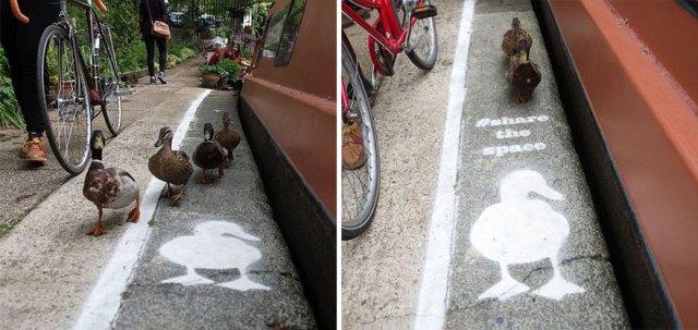 carril-camino-patos-sharethespace-londres (1)