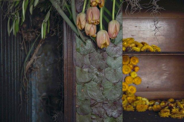 casa-abandonada-jardin-flores-lisa-waud-detroit (13)