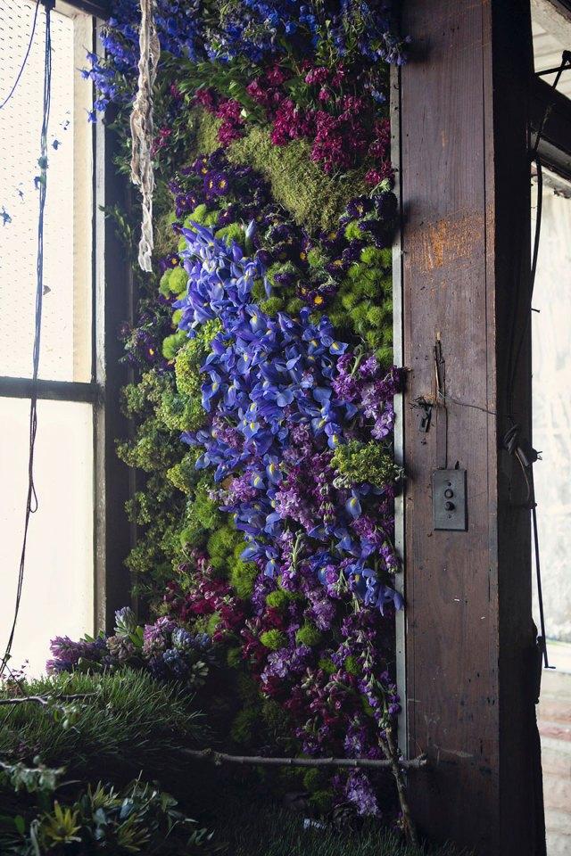 casa-abandonada-jardin-flores-lisa-waud-detroit (2)
