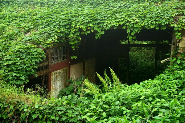 aldea-abandonada-naturaleza-china (1)