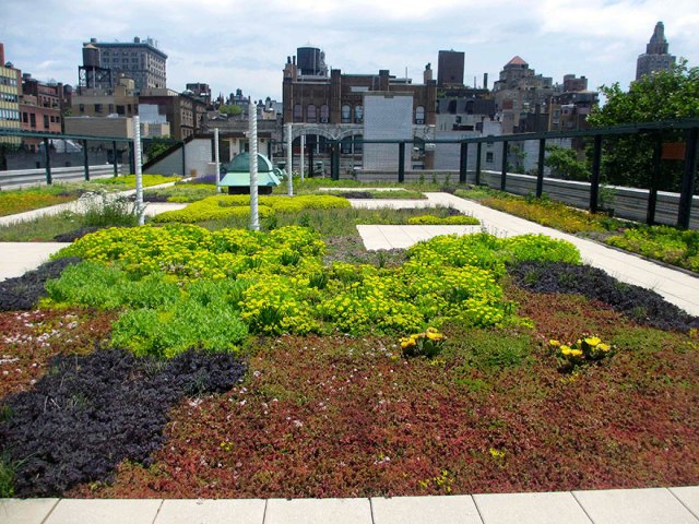 escuelas-publicas-nueva-york-paneles-solares (6)