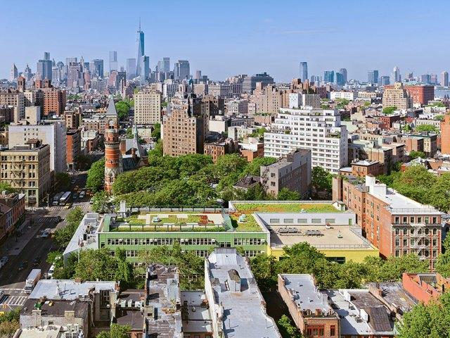 escuelas-publicas-nueva-york-paneles-solares (8)