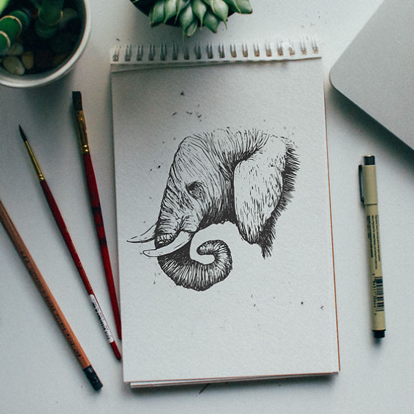 ilustraciones-diarias-animales-alfabeto-kyson-dana (12)