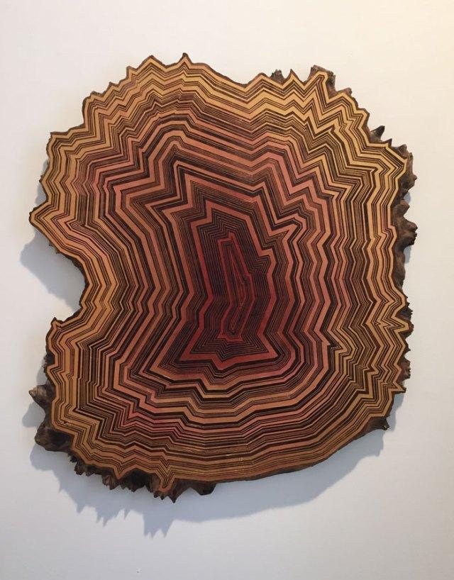 pintura-hipnotica-pedazos-madera-jason-middlebrook (10)