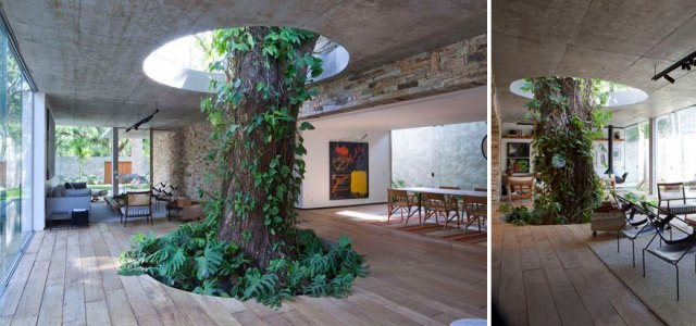 arquitectura-alrededor-arboles (8)