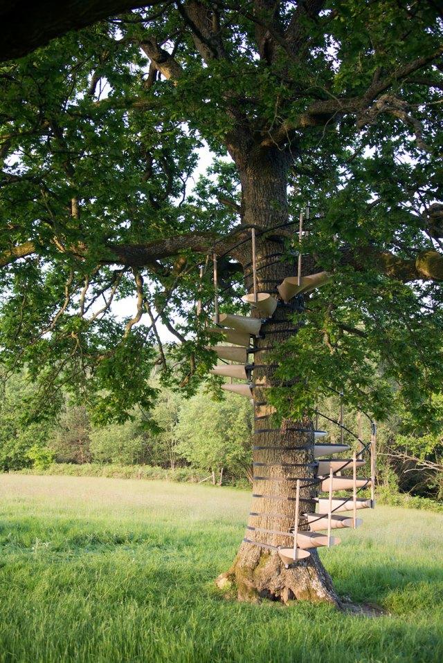 escaleras-caracol-arboles-thor-ter-kulve-robert-mcintyre (2)