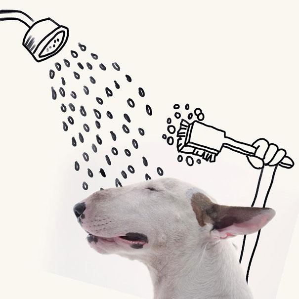 ilustraciones-interactivas-perro-jimmy-choo-rafael-mantesso (20)