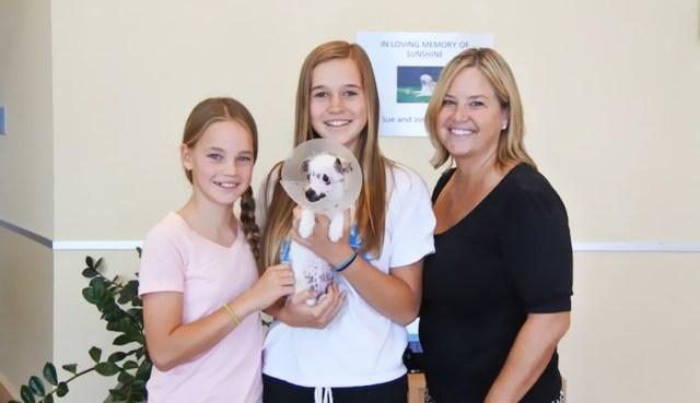 cachorro-perro-cicatrices-adoptado-hssv-christine-doblar (8)