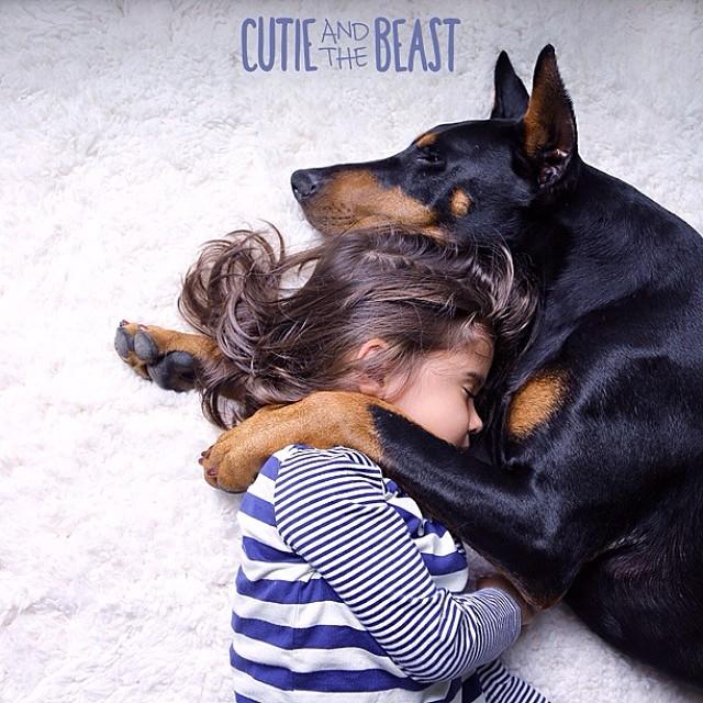 cutie-beast-nina-siena-perro-doberman-buddha (12)