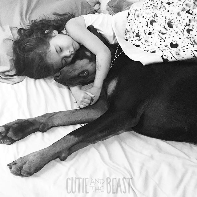 cutie-beast-nina-siena-perro-doberman-buddha (18)