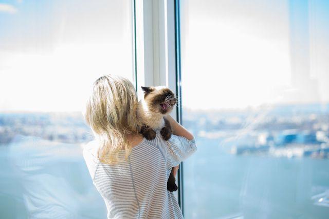 fotos-gatos-celebres-instagram-duenos-eeuu-meow-quarterly (12)