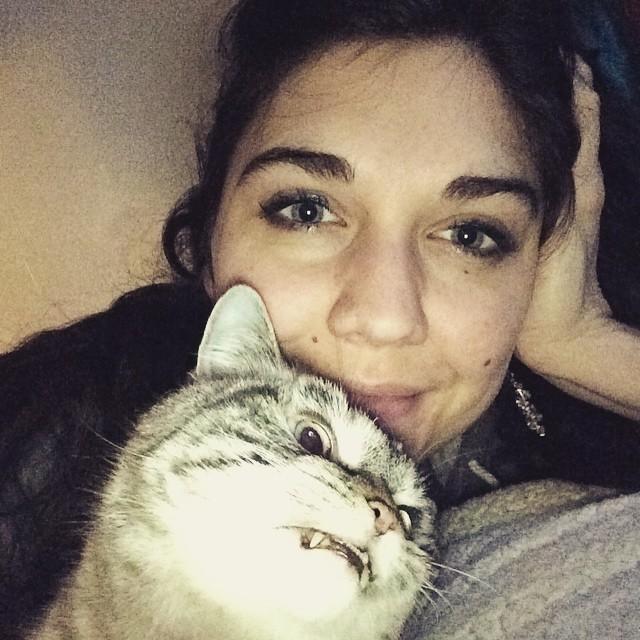 gato-vampiro-enfadado-loki (11)