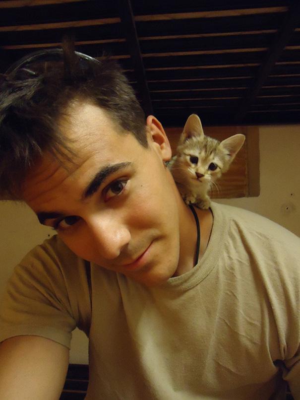 soldados-con-gatos (1)