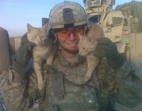 soldados-con-gatos (10)