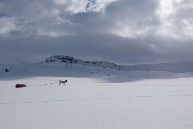 acampada-esqui-noruega-perro-husky-henrik-vikse (2)