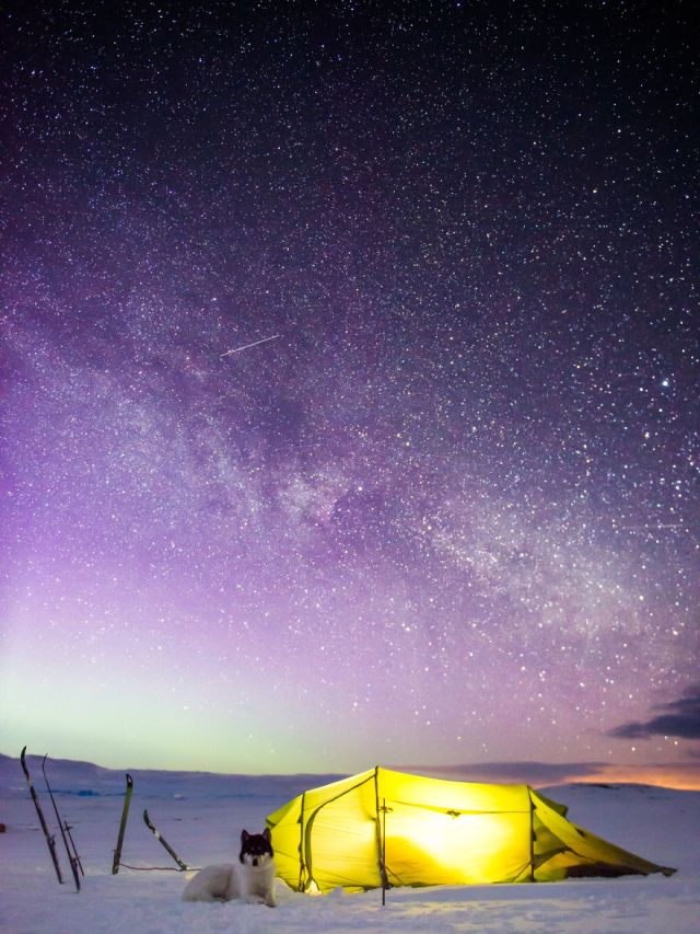 acampada-esqui-noruega-perro-husky-henrik-vikse (7)
