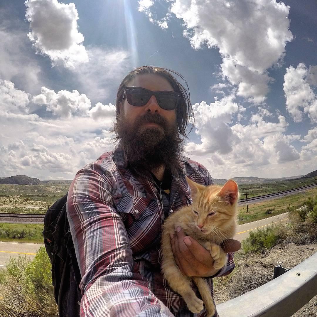 motorista-salva-gato-pat-doody (4)