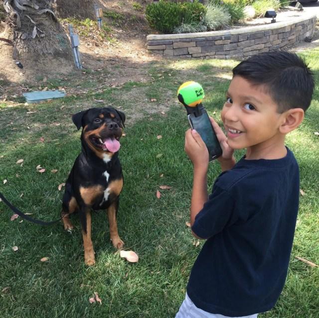 pooch-selfie-accesorio-movil-perros-jason-hernandez (1)