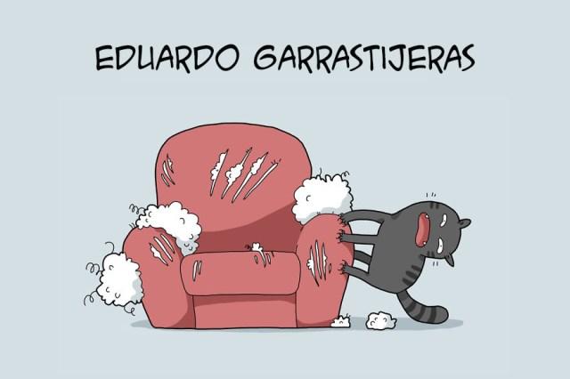 ilustraciones-tipos-gatos-lingvistov-(6)