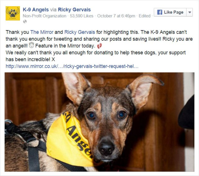 tuit-ricky-gervais-ayuda-refugio-perros-k9-angels (11)