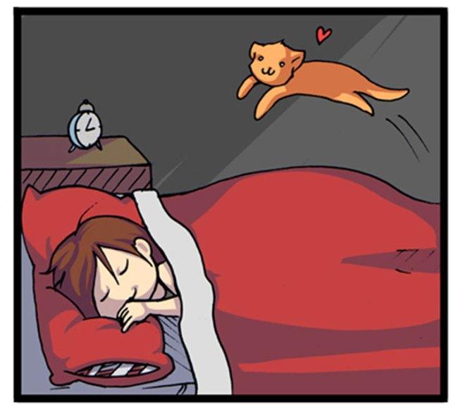 webcomic-gatos-anything-kelly-angel (12)