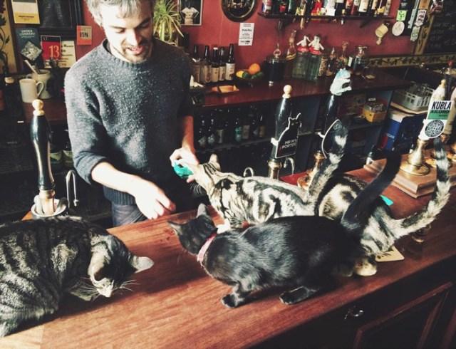 bar-gatos-pub-bag-of-nails-bristol (8)