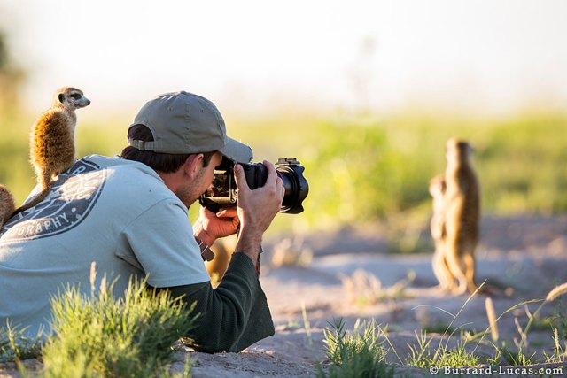 fotografos-naturaleza (19)