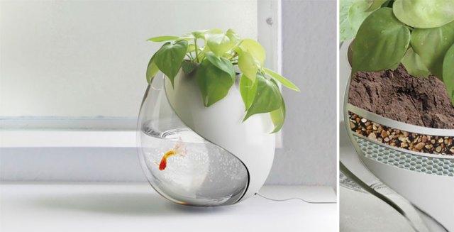 macetas-creativas-plantas (5)