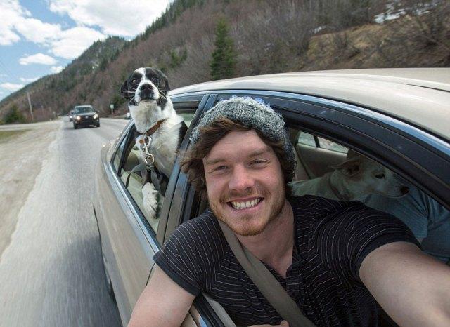 experto-selfies-animales-allan-dixon (12)