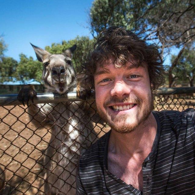 experto-selfies-animales-allan-dixon (6)