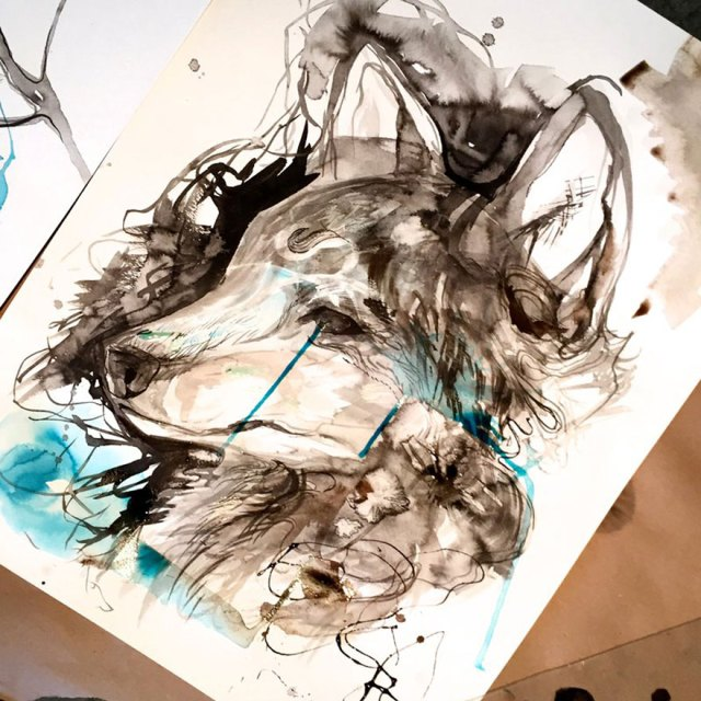 ilustraciones-animales-color-katy-lipscomb (8)