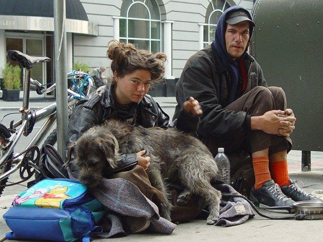 indigentes-perros-lealtad (5)