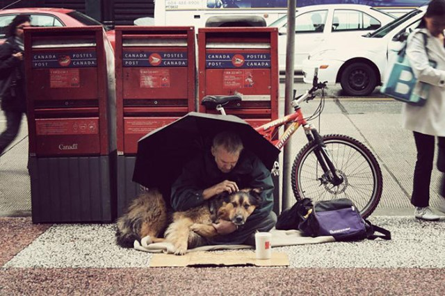 indigentes-perros-lealtad (7)