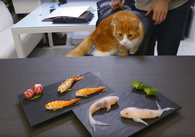 sushi-forma-carpa-koi-junskitchen (4)