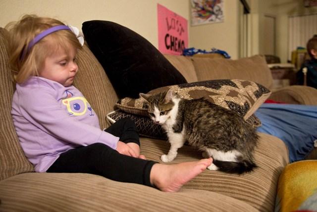 gato-nina-amputados-doc-scarlette-tipton (6)