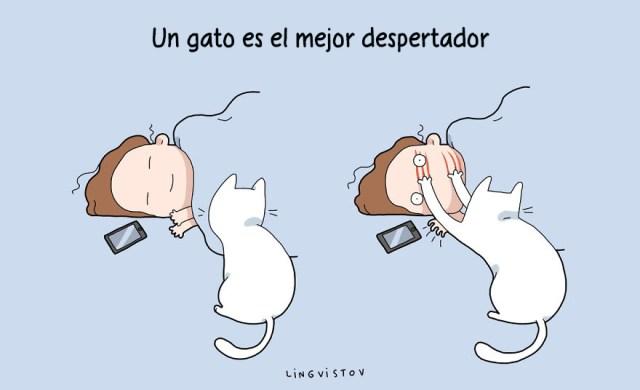 ilustraciones-beneficios-tener-gato-lingvistov-15