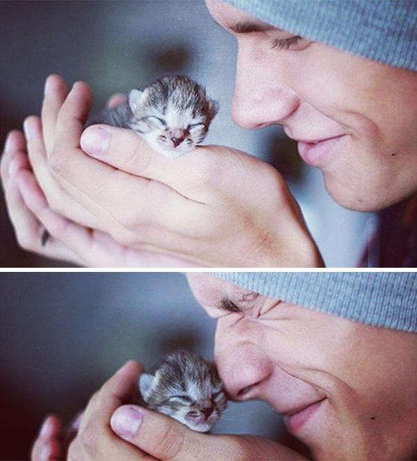 instagram-tios-buenos-gatos (5)