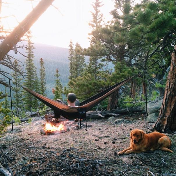 perro-aspen-viajes-aventura-hunter-lawrence (5)