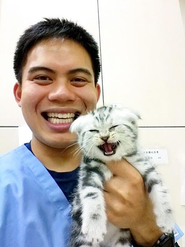ventajas-trabajar-animales-veterinaria (13)