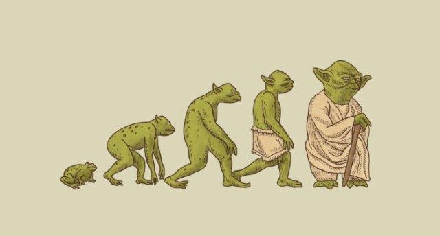 evolucion-dia-darwin (3)