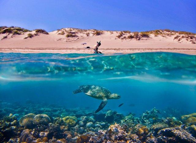 fotos-sobre-bajo-agua (6)