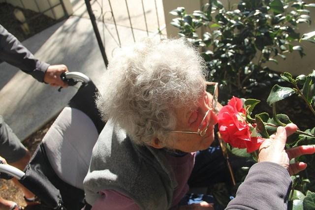 anciana-90-cancer-viaje-carretera-tratamiento (13)