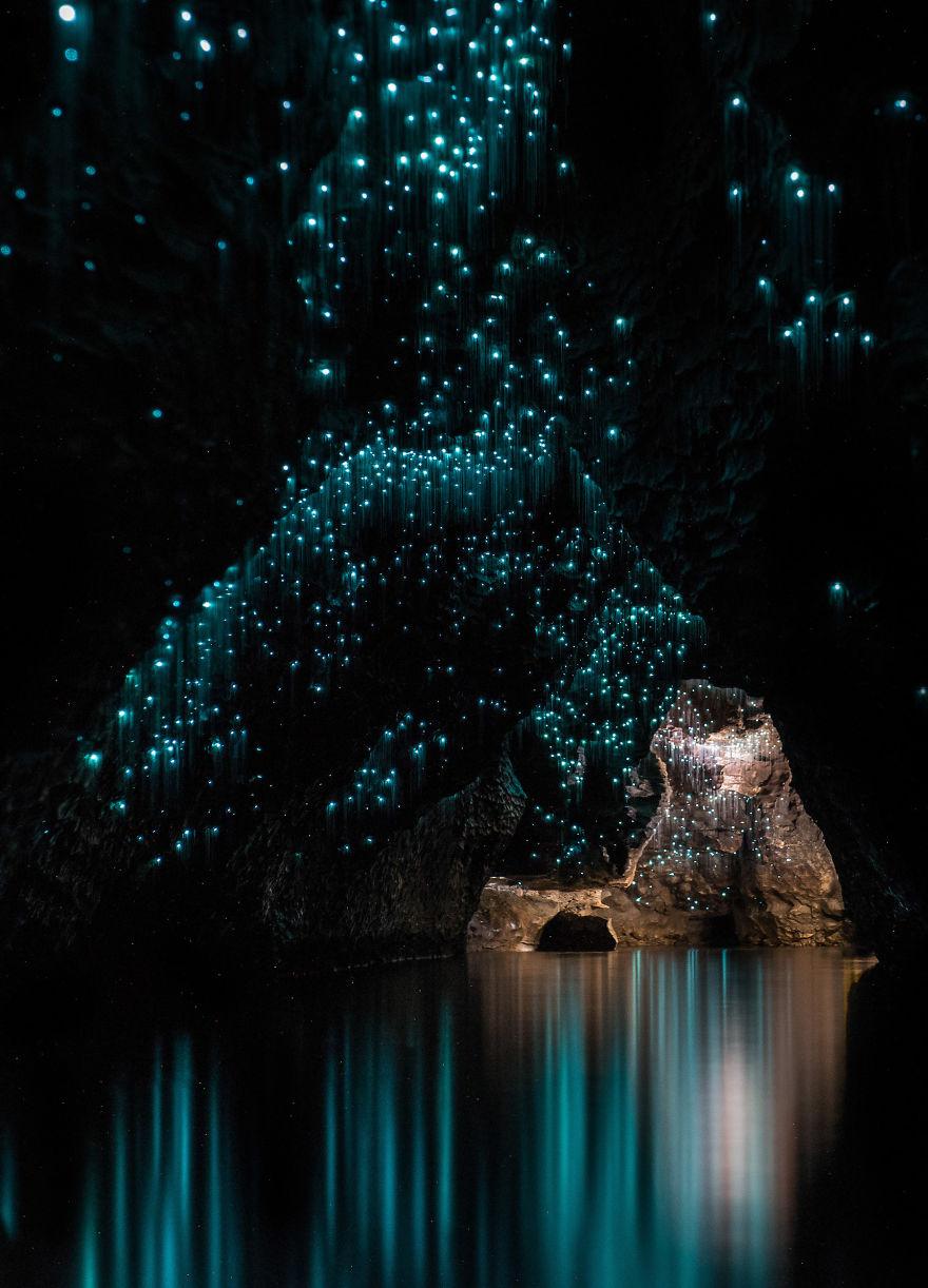 gusanos-brillantes-cuevas-nueva-zelanda-shaun-jeffers (6)