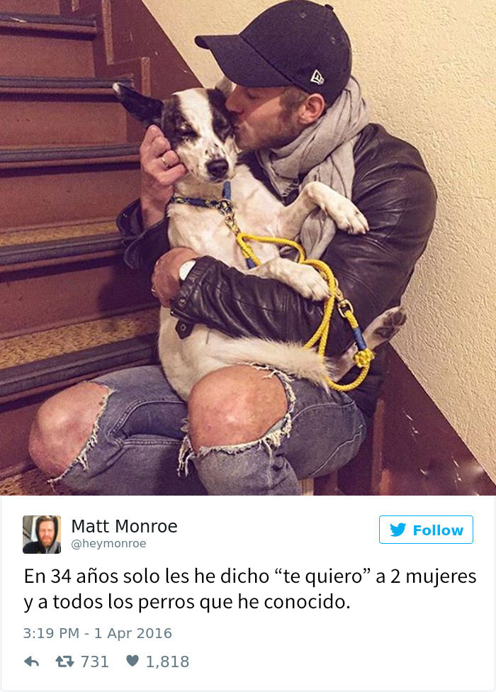 tuits-perros-13